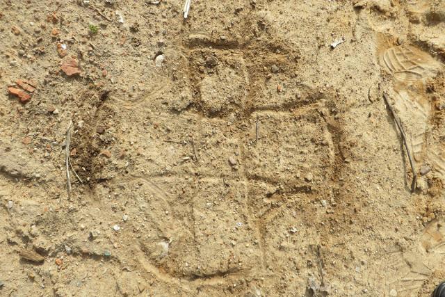 Так должна выглядеть колокольня «в разрезе». Рисунок на земле А.В.Чирка. Это Мальтийский крест.