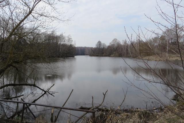 Монастырь имел большое хозяйство. Каскад рыбных прудов. Рыбу там ловят и сейчас.
