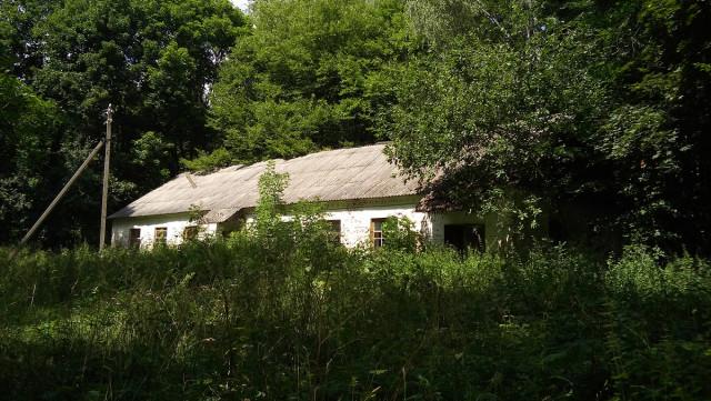 Подсобное строение на территории усадьбы