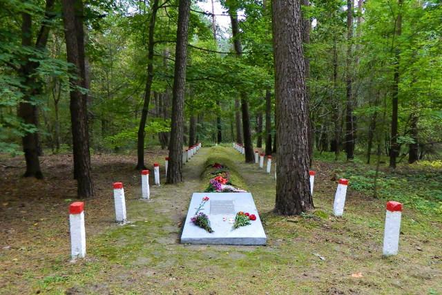Самая большая братская могила в Карховском лесу. Фото: А.Фаранов