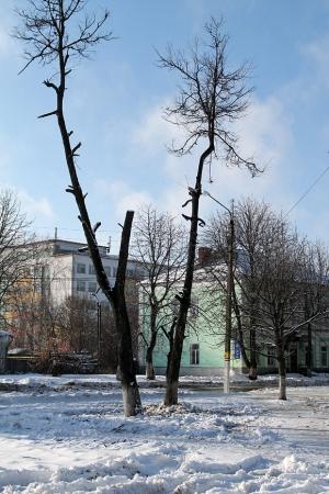 Сквер у кинотеатра Октябрь. Фото: К.Карпов