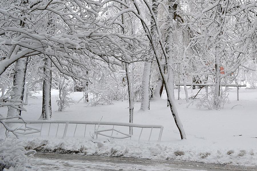 Новозыбков после снегопада