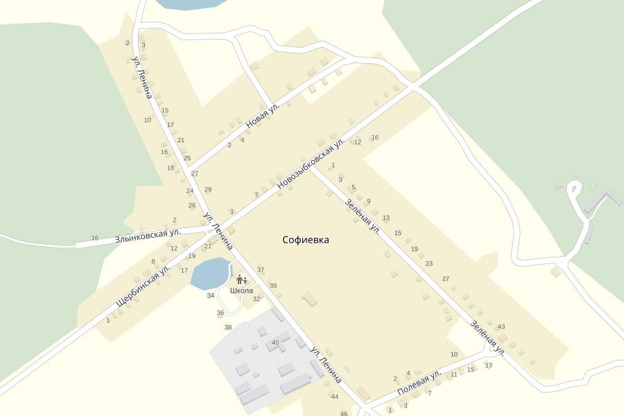 Новозыбковская улица в деревне Софиевка