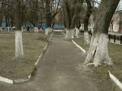 Alleya-v-skvere2-240x180.jpg