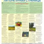 Литстраница в газете Новозыбковские вести, 2015 г.