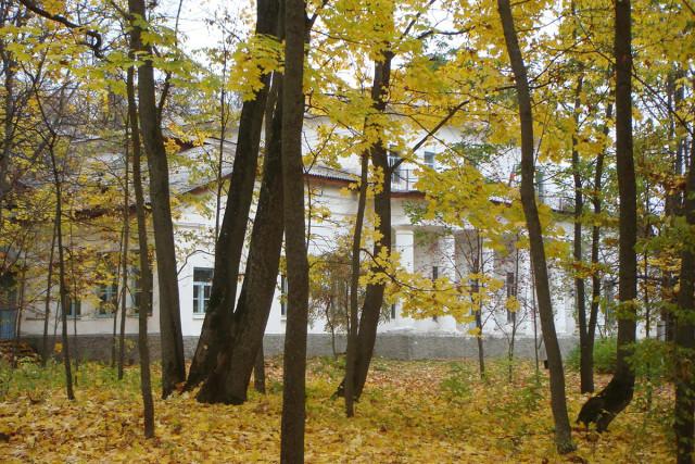 особняк в с.Великая Топаль