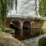 Новозыбков. Мост. июль 2019 г. Фото Б.А. Мейкупа (31)