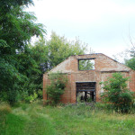 Опытная станция. Хозяйственные постройки (3)