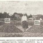 Влияние азотистого удобрения на урожай картофеля