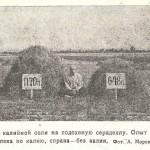 Влияние калийной соли на сераделлу. Опыт 1925 г.