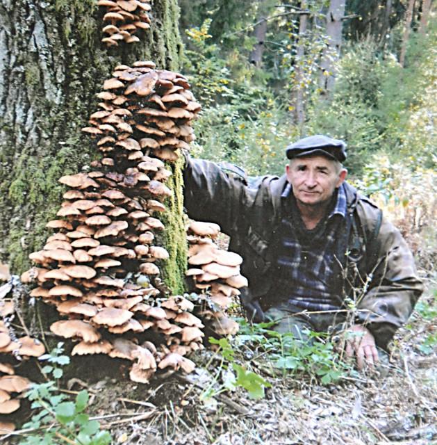 А.И.Поддубный при сборе грибов